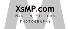 XsMP.com – Martin Pieters wildlife and nature photographer - Photography by XsMP.com