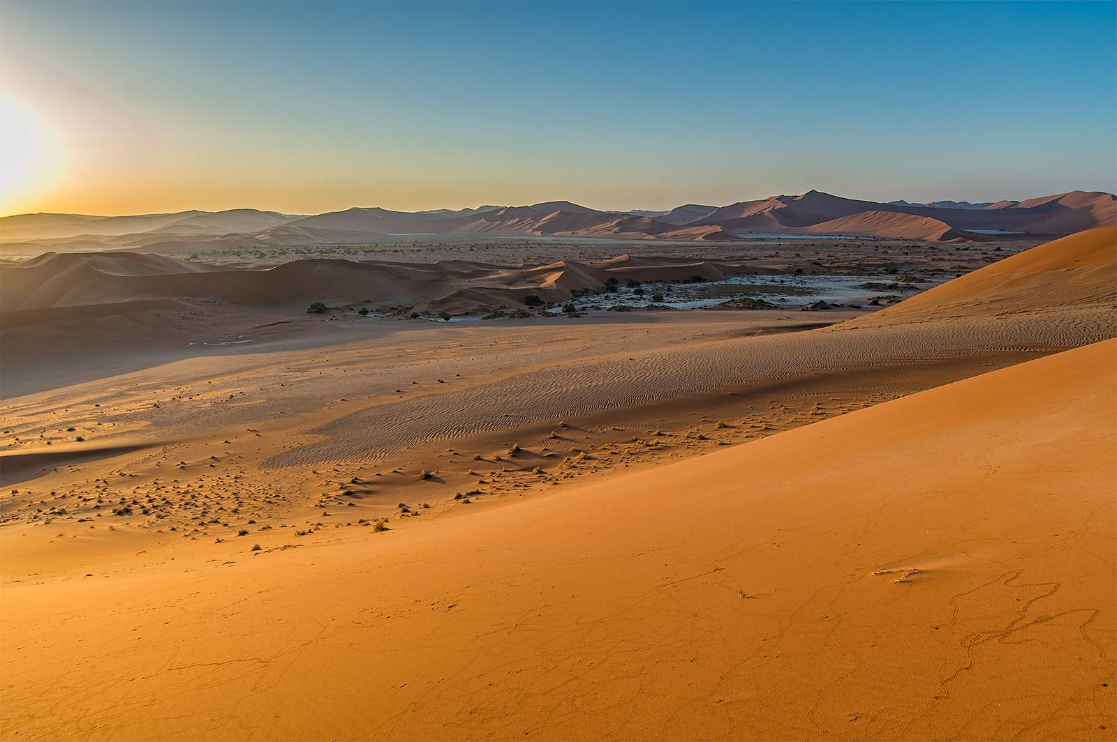 golden glow over sossusvlei namibia 2013