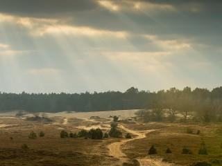 Sunset 2 in Kootwijker sanddunes