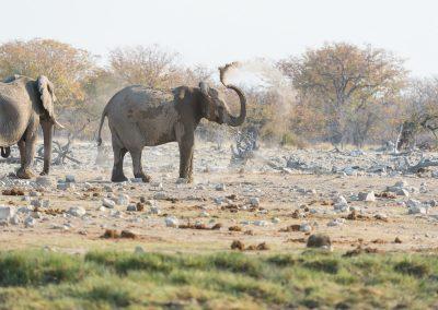 mp20180916_namibia_0602.jpg